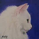 The White Cat by Noewi