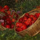 apple time by ANNABEL   S. ALENTON