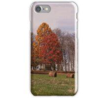 A typical fall scene iPhone Case/Skin