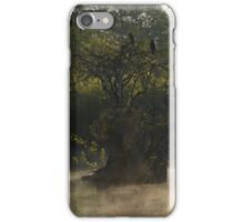Morning Mist at Everglades National Park iPhone Case/Skin
