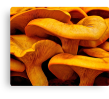 Jack-O-Lantern Mushroom Canvas Print