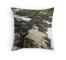 Wild Nature - Rocks, Sand and Seaweed, Great Bernera Throw Pillow