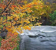 Top of the Falls by Kenneth Keifer