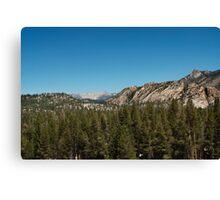 High sierra tree line Canvas Print