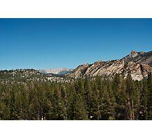 High sierra tree line Photographic Print