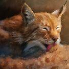 Sunbathing by Lois  Bryan