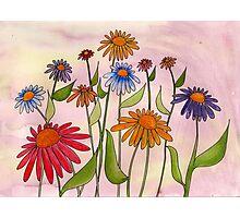 Daisy Bouquet Photographic Print