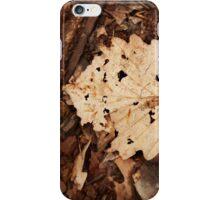 Fallen foliage iPhone Case/Skin