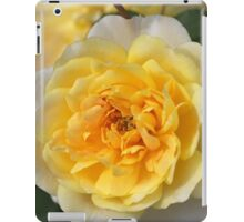 Love Of The Rose iPad Case/Skin