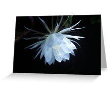 Moonflower Greeting Card