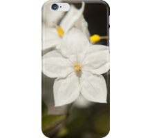 Potato vine flower iPhone Case/Skin