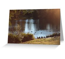 At The Pond Greeting Card