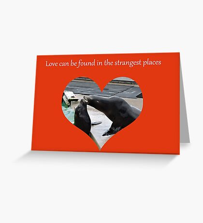 Sealing Love: The Strangest Places Greeting Card