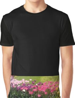 Tulips in bloom Graphic T-Shirt