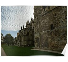 Strong Walls of Exeter Cathedral.......Devon uk Poster