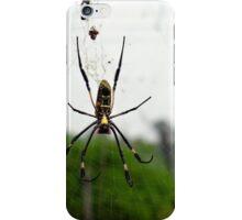 ID Spider iPhone Case/Skin