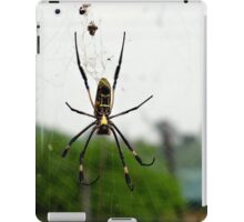 ID Spider iPad Case/Skin