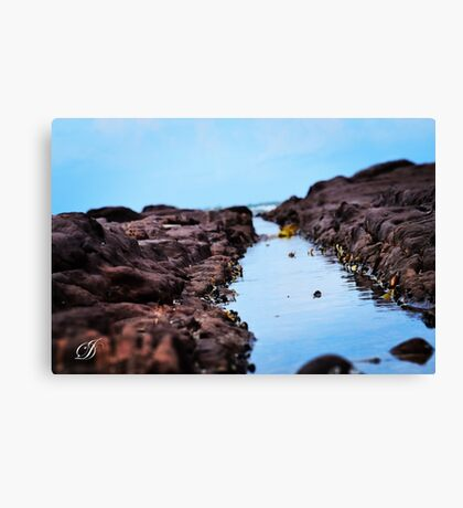MINI ROCK CREEK Canvas Print