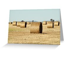 Haybale Cylinders Greeting Card