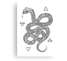 Elemental Snake Canvas Print