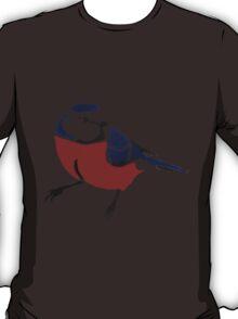Graffiti Robin T-Shirt