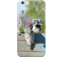 NZDAC GORE 2014 - Schnauzer iPhone Case/Skin