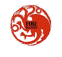 Fire and Blood/ Game of thrones/ Targaryen Sigil Photographic Print