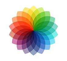 Abstract colorful flower design Photographic Print