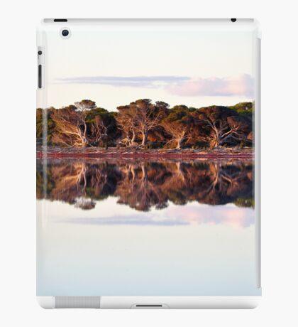 Gods Masterpiece iPad Case/Skin