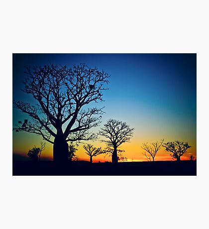 Sunset Sky Photographic Print
