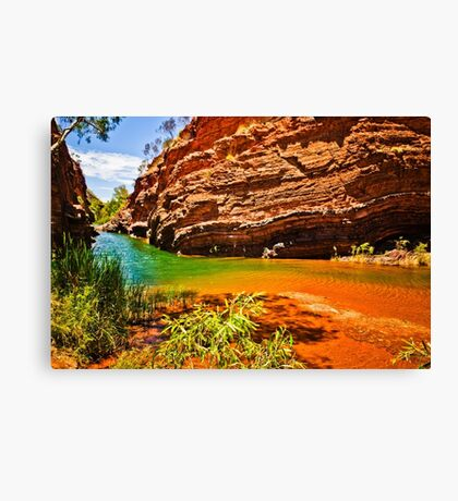 Hamersley Gorge Canvas Print