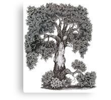Battle Scarred Canvas Print
