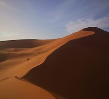 Dune by unwashedfaces