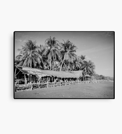 Palm Trees on Tropical Beach Shot on Black and White Film Canvas Print