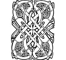 Celtic dogs 2 Photographic Print