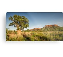 An Ancient Landscape Metal Print