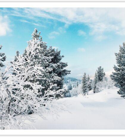 Frozen White Winter Landscape in Rondane National Park (Norway) Sticker