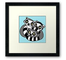 Cuddly Ring Tailed Lemurs Framed Print