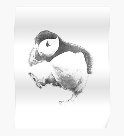 9GAG - Unpopular Opinion Puffin Poster