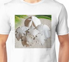 Sand Dollars In San Diego  T-Shirt
