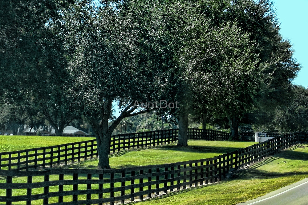 Horse Fencing by AuntDot