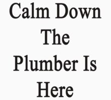 Calm Down The Plumber Is Here  by supernova23