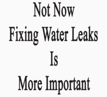 Not Now Fixing Water Leaks Is More Important  by supernova23