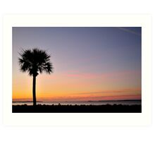 Patriots Point Palm Art Print