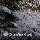 Song of the Angels by Charles & Patricia   Harkins ~ Picture Oregon