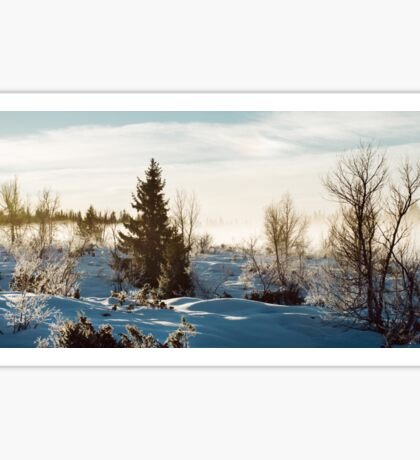 White Scandinavian Winter Landscape With Mysterious Fog on Sunny Sticker