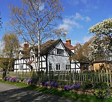 Flowers underline English Cottage by ScenicViewPics