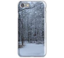Winter Wonderland iPhone Case/Skin