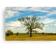 TREE FULL OF LIFE Canvas Print