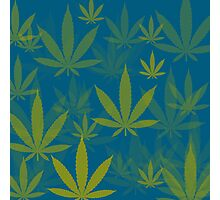 Marijuana Cannabis Weed Pot Indie Colors Photographic Print